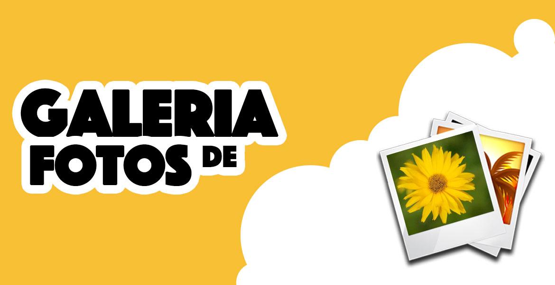 PierGalerias - Galeria de fotos e usuários
